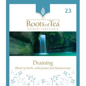 Ceai de plante cu fenicul si coacaze Draining Arthemia (20 plicuri/cutie)