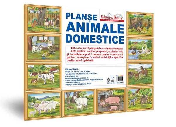 Animale domestice - Set 10 planșe A3 imagine edituradiana.ro