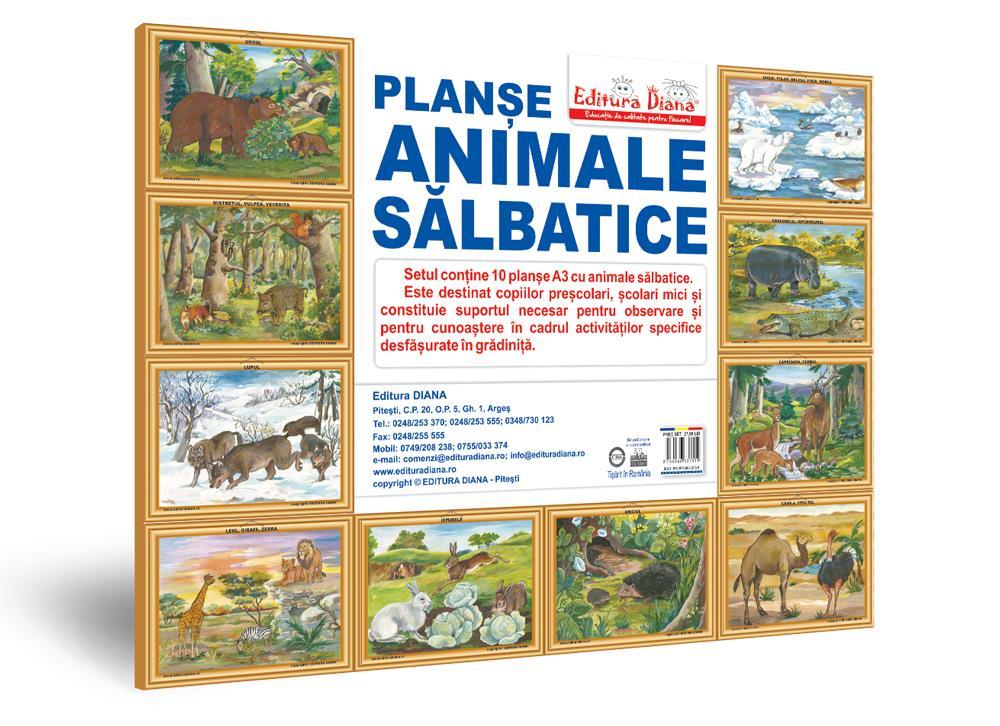 Animale sălbatice - Set 10 planșe A3 imagine edituradiana.ro