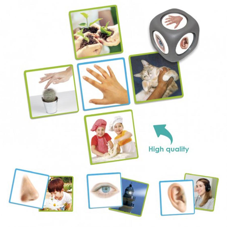 Cele 5 simțuri de bază ale omului imagine edituradiana.ro