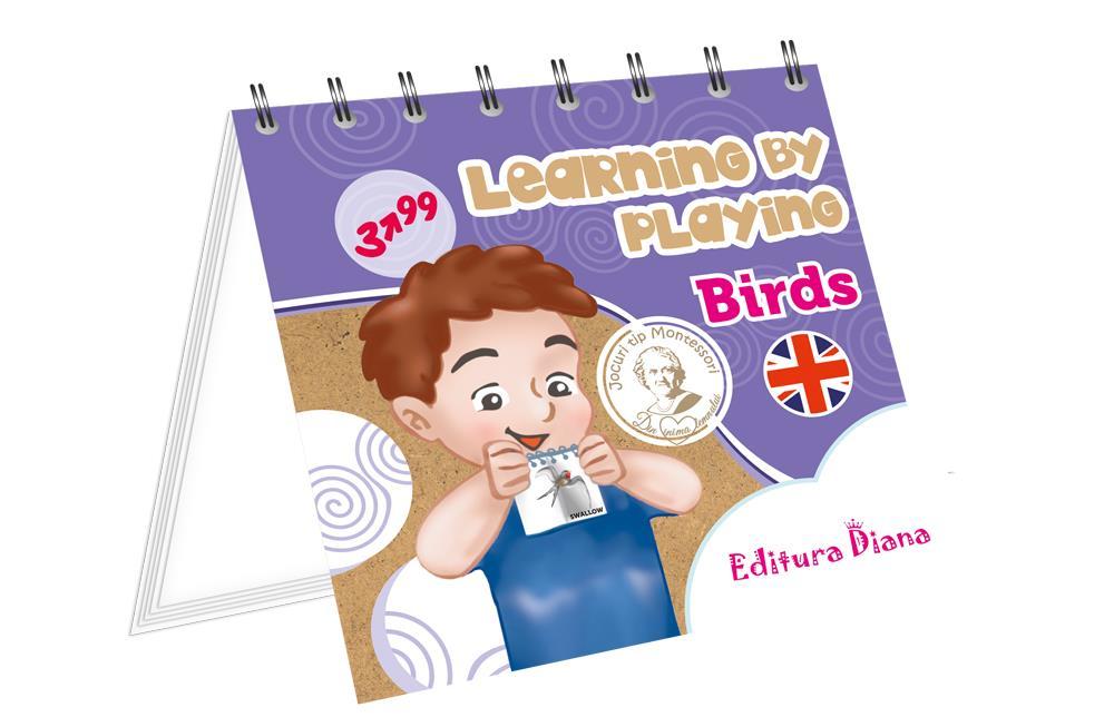 Păsări - Învăț prin joc- Limba engleză imagine edituradiana.ro