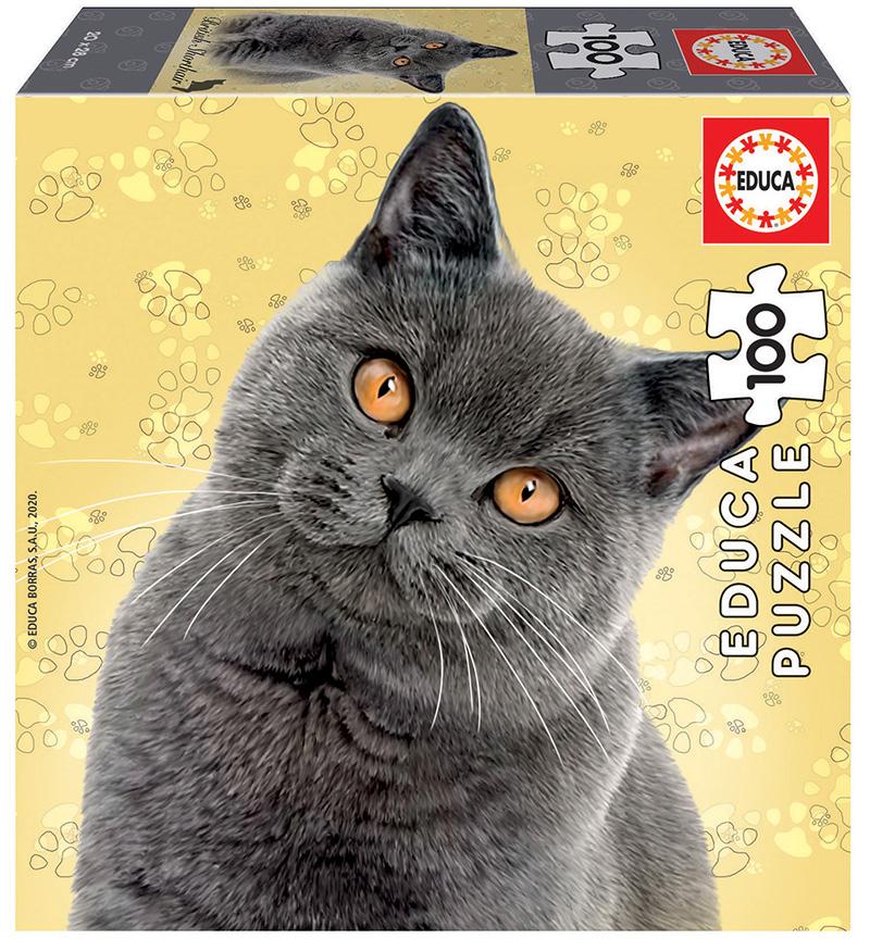Puzzle cu 100 de piese în mini cutie tip cub - Pisică British Shorthair imagine edituradiana.ro