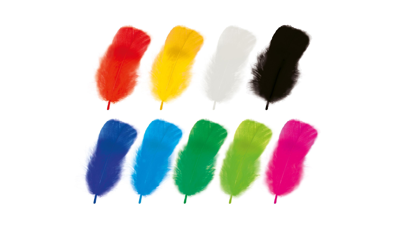 Set de pene naturale colorate imagine edituradiana.ro