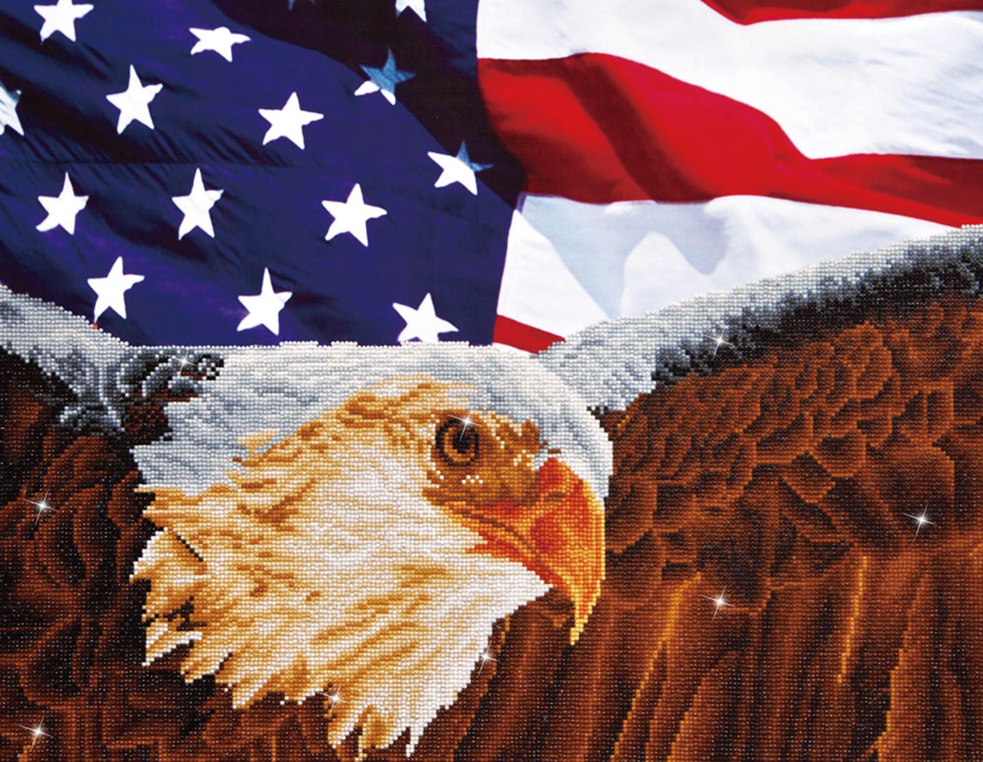 Tablou cu diamante - Vultur și drapel american, 56 x 71 cm imagine edituradiana.ro