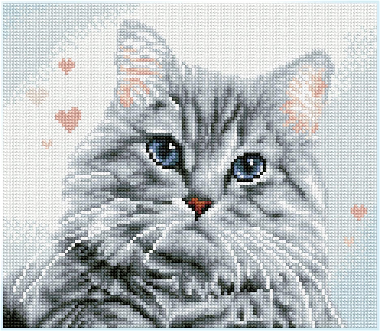 Tablou cu diamante înrămat – Pisicuța Pricilla