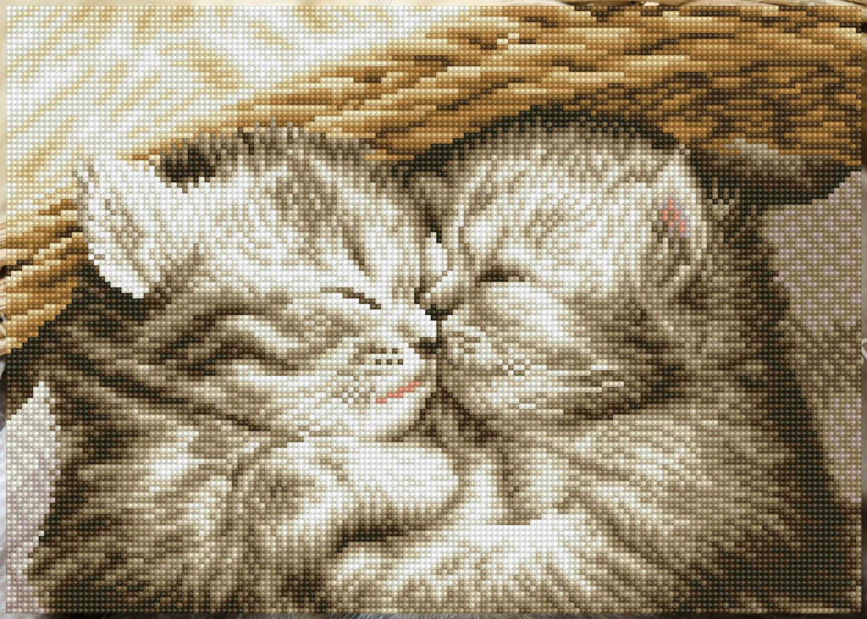 Tablou cu diamante – Pisicuțe drăgălașe