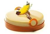 Tort de ciocolata Zeylon Chocovic si mandarine