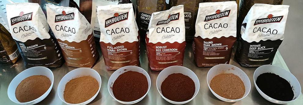 Arborele de cacao - Wikipedia