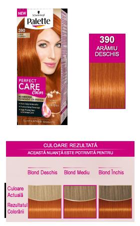 Vopsea Par Oxidant Vopsea Par Palette Perfect Care Color 3