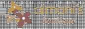 Almanis Boutique - Flori in combinatii  originale  vor oferi stil si eleganta evenimentelor din viata dvs.