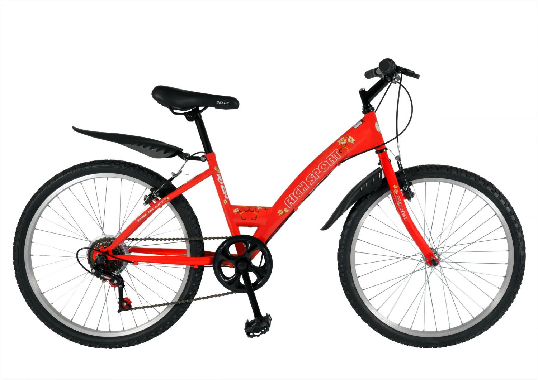 Bicicleta TREKKING  24