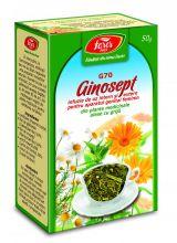 Ceai Ginosept 50g - Fares