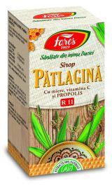 Sirop Patlagina Miere Propolis 100ml - Fares