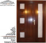 Uşă de exterior Lemn Stratificat STEJAR - Culoare CIREŞ