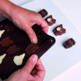 Forma Silicon Chocoice Ferma, 16 cavitati