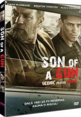 Ucenic pentru crima / Son of a Gun - DVD