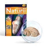 Minunile Naturii - Nr. 12: Cochilie de Gastropod