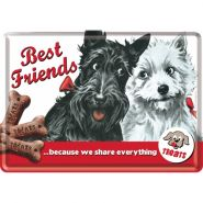 Carte postala metalica Best Friends