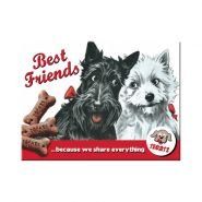 Magnet Best Friends