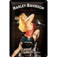 Placa metalica 20X30 Harley-Davidson biker Babe