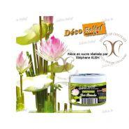 Colorant Verde Maslin (Vert Olive) 50 g Deco Relief