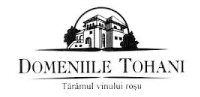 DOMENIILE TOHANI