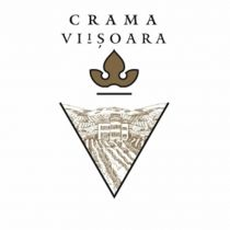 VIISOARA ROSE DEMISEC - Bag in Box 10L