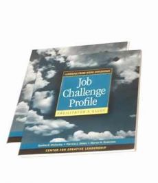 Job Challenge Profile Participant Workbook & Survey Set