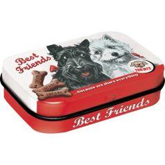 Cutie metalica de buzunar Best Friends