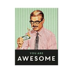Magnet You Are Awesome