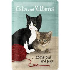 Placa metalica 20X30 Cats and Kittens