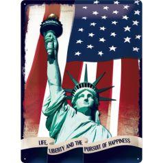 Placa metalica 30X40 Statuia Libertatii