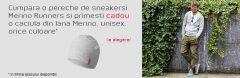 Promotia Giessweinromania #