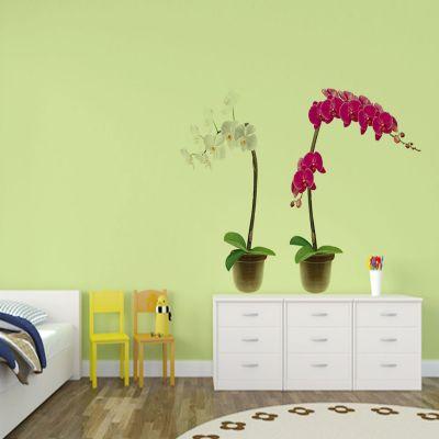 Sticker perete Orhidee