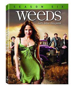 Ierburi / Weeds - Sezonul 6 - DVD (3 discuri DVD)