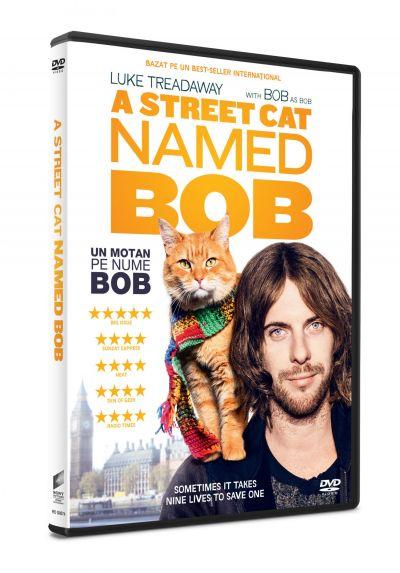 Un motan pe nume Bob / A Street Cat Named Bob - DVD