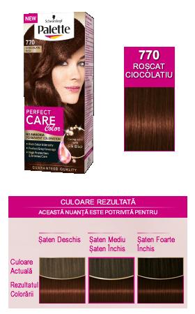 Vopsea Par Oxidant Vopsea Par Palette Perfect Care Color 7