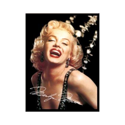 Magnet Marilyn Monroe shining