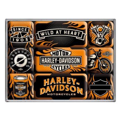 Set magneti Harley-Davidson Wild at heart