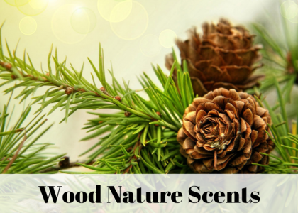 Parfumuri - Wood & Nature Scents AS 750 - 500ml