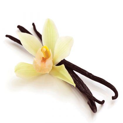 Pastai de Vanilie Bourbon Madagascar 125 g