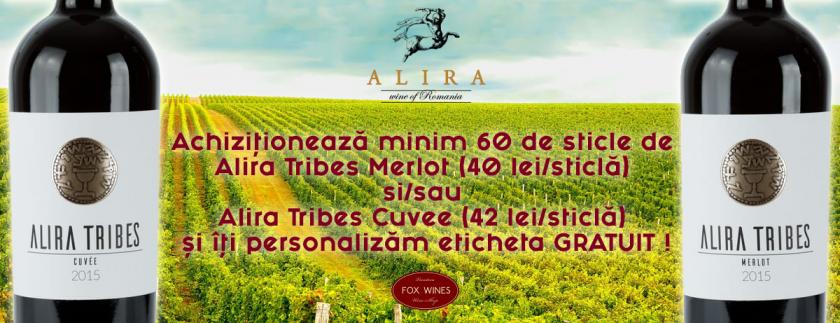 Pachet promotional Alira Tribes